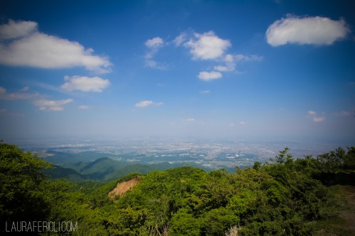 View from the summit of Oyama
